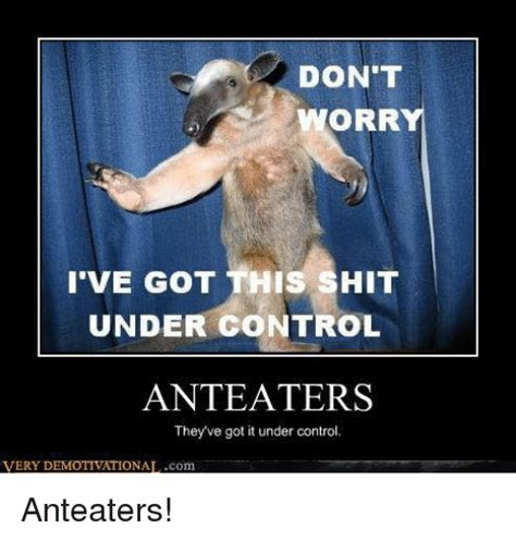 Anteater Meme - funny anteater memes of 2017 on sizzle yipee