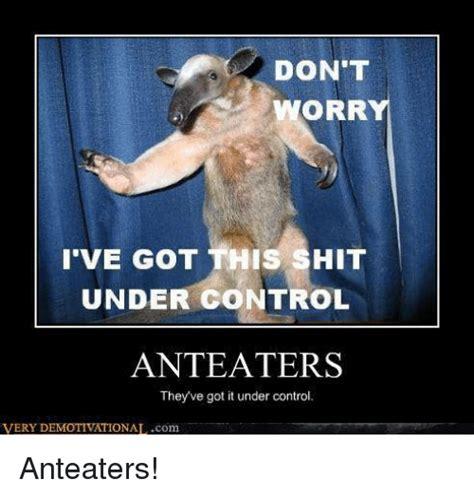 Anteater Meme - anteater meme 28 images funny anteater memes of 2017