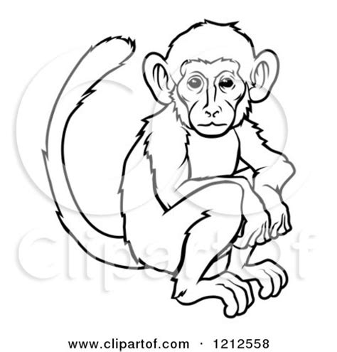 how to draw new year monkey of an outlined zodiac monkey royalty