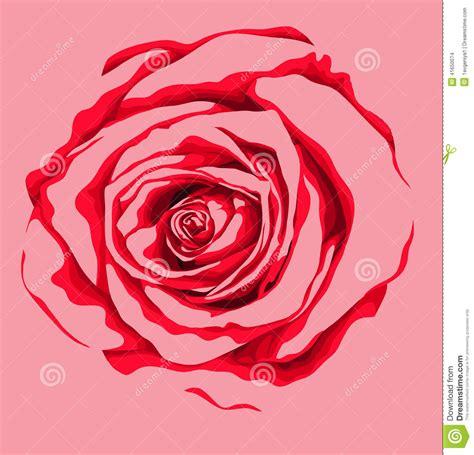belle fleur de rose de rouge avec l effet d un dessin d
