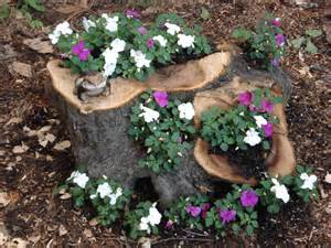 try a tree stump planter uconnladybug s