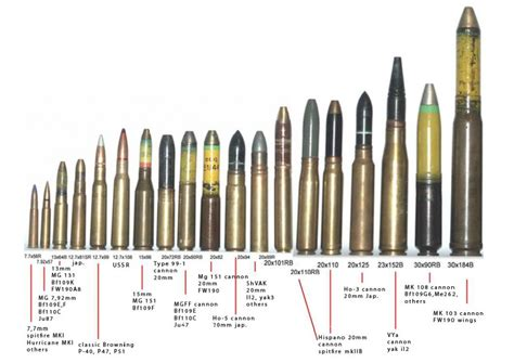 ammo and gun collector ammo cartridge comparison