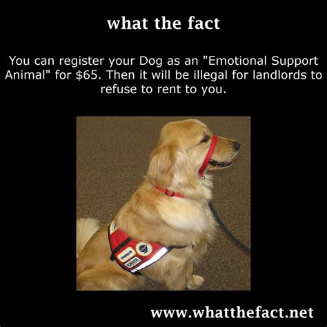 register your as an emotional support animal pin here you can see the arneson installed on my manta asd design 2 x on