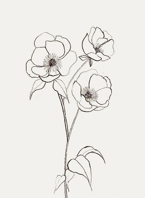 simple drawing flower best 25 simple flower drawing ideas