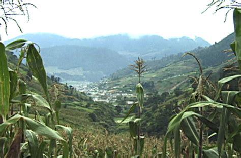 Guatemala Search Almolonga Guatemala Images Search