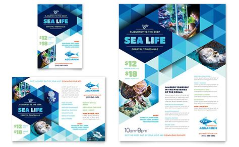 wedding dj brochure templates aquarium flyer ad template design