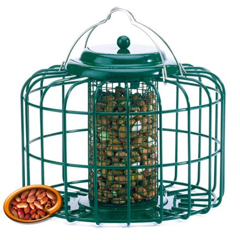 the nuttery squirrel and predator proof oval nut feeder