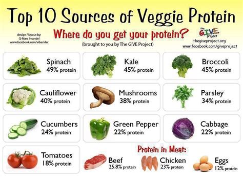 Sources Of Protein by Get Lean Add Protein Losing It With