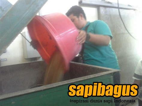 Bibit Sapi Jateng expo peternakan sentra peternakan rakyat trimulyo
