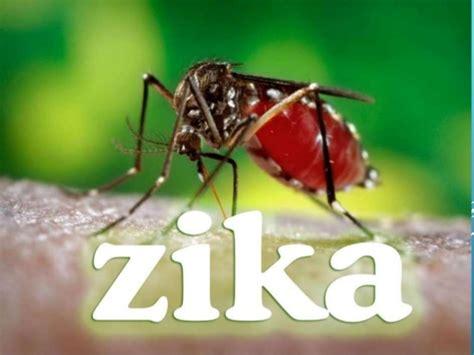 imagenes de niños con zika zika