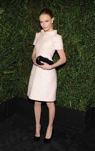 Chanel Kate Bosworth And Chanel Clutch Evening Bag by Kate Bosworth And Chanel 2013 Hc Pink Dress