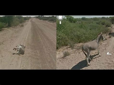 Imagenes Extrañas Captadas Por Google Maps | im 225 genes escalofriantes captadas por google maps taringa