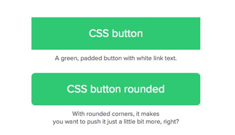 Css Layout Rounded Corners | css basics how to make a css rounded corners button