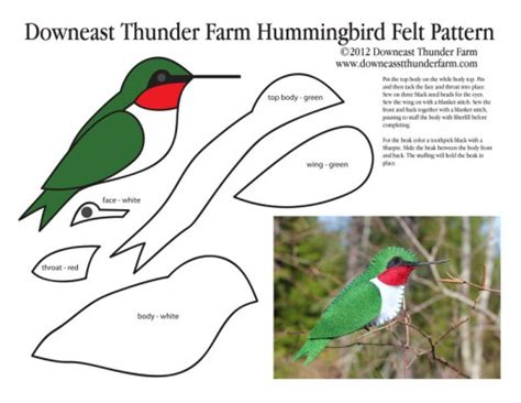 bird ornament template ruby throated hummingbird felt ornament downeast thunder