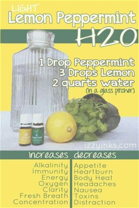 Peppermint Liver Detox by 1000 Ideas About Living Detox On