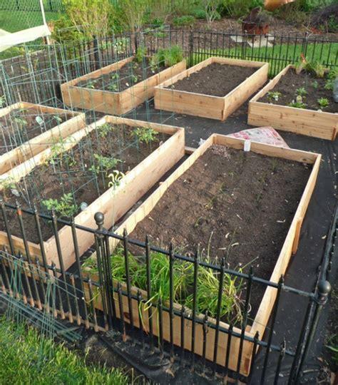 vegetable garden box diy garden boxes vegetable garden