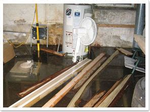 Why Do Basements Smell by What To Do And What Not To Do When Your Basement Is Flooded