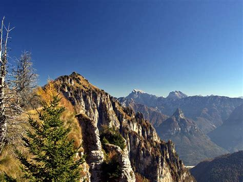 italy in green nature and wildlife travel ideas