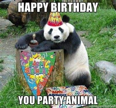 you party animal funny happy birthday meme just sayin