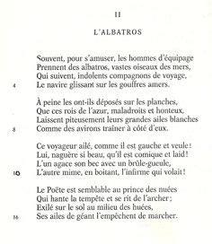 l albatro testo le catalogue d id 233 es