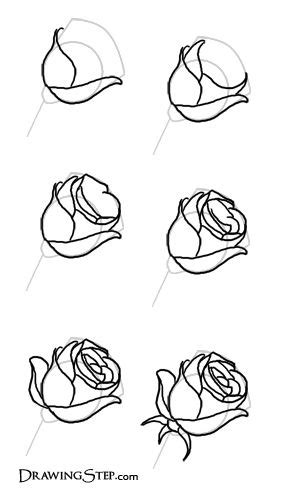 Gambar Bunga Yang Gampang Digambar - Gambar Bunga