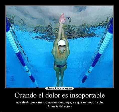 imagenes motivacionales de natacion desmotivaciones nataci 243 n megapost taringa