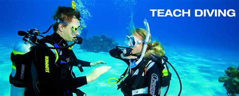 dive school school of diving padi scuba diving courses