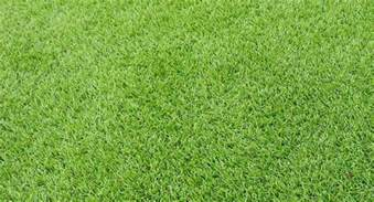 artificial grass free measure quote on all synthetic grass