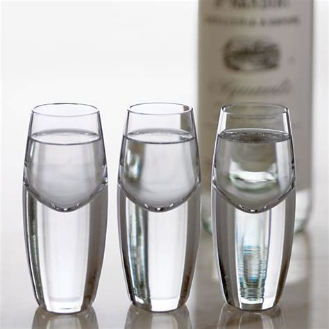 crate and barrel barware kirby cordial glass