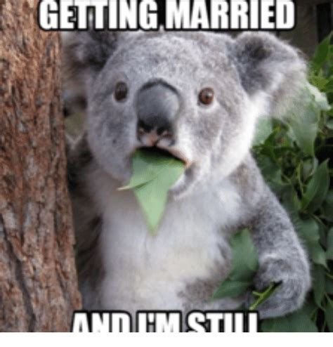 Search For Married Search Getting Married Memes Memes On Sizzle