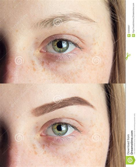 Eyebrows Are Light by Up Stock Photo Image 55959697