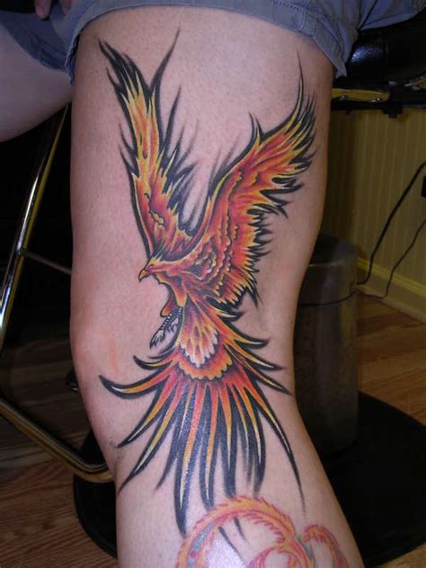 tattoo phoenix flames flame phoenix tattoo