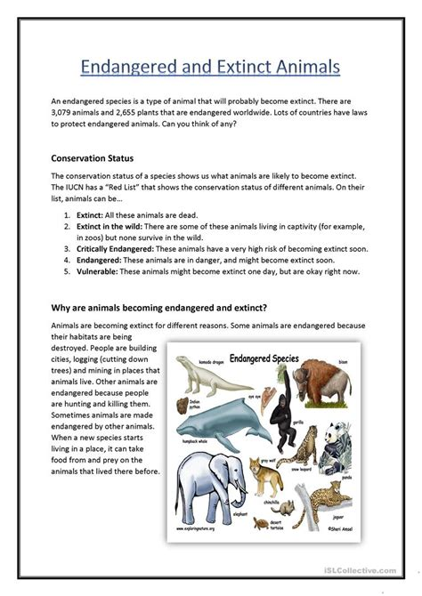 endangered extinct animals worksheet free esl