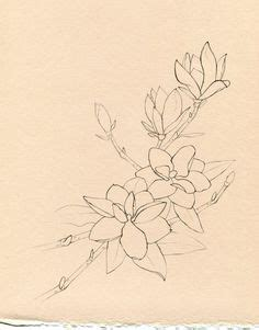 southern draw tattoo southern magnolia drawing southern magnolia