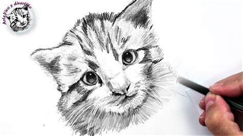 imagenes realistas de animales c 243 mo dibujar un gato peque 241 o a l 225 piz f 225 cil paso a paso
