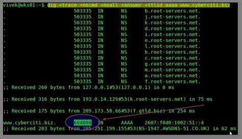 linux unix dig command find  ttl time