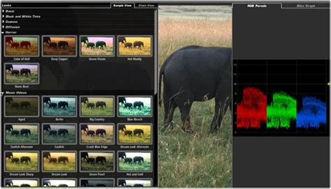adobe premiere pro plugins top 10 adobe premiere plugins for different effects and
