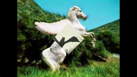imagenes de unicornios y pegasos fotos de pegasos youtube