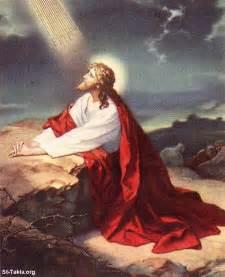 navigating the finite gethsemane