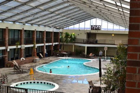 free puppies in bowling green ky the greenwood hotel in bowling green ky free swimming pool indoor pool