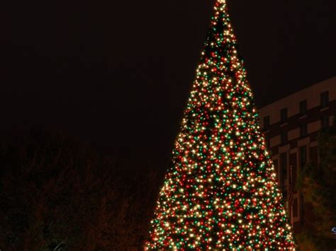 what tree holds lights better mahwah holds annual tree lighting dec 7 mahwah nj patch