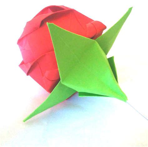 Origami Calyx - origami calyx for an origami master of