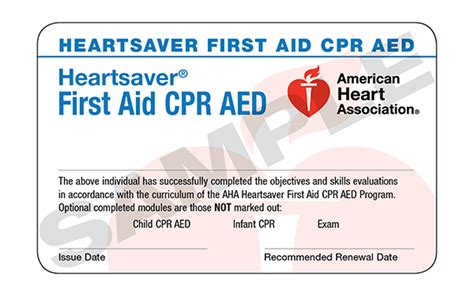 Healthcare Provider Cpr Card Template