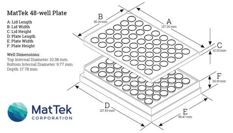 24 well plate template 48 well cell culture plate dimensions best culture 2017
