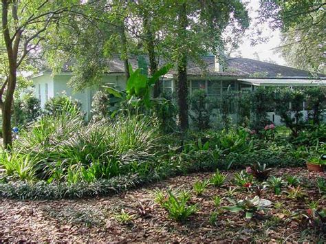 learn the basics of florida friendly landscaping ta