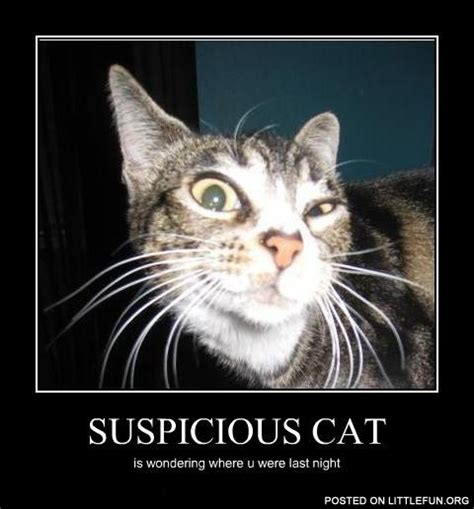 Suspicious Meme - suspicious meme 28 images french fry meme memes fry that s suspicious nothing suspicious