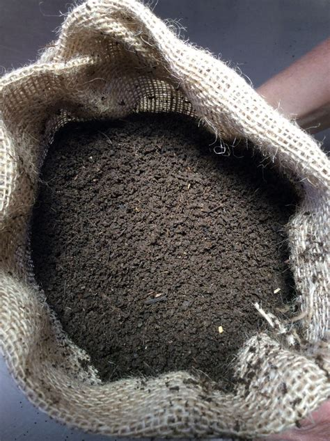 best compost worms 17 best images about worm composting recycling on