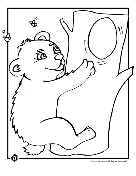 baby bear coloring pages az coloring pages