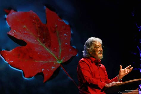 Who Is David Suzuki by Science Matters The Simple Minded Nature Of Human