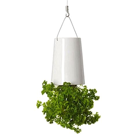 small hanging plants popular small white plant pots buy cheap small white plant